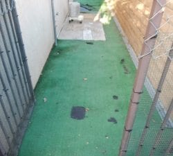 Pet Artificial Grass Installation - Dog Run in Corona
