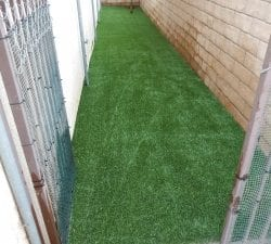2Pet Artificial Grass Installation - Dog Run in Corona