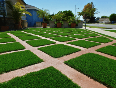 artificial grass and hardscape pavers only
